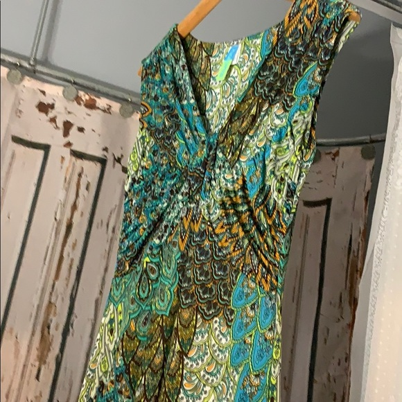 Touch Express Dresses & Skirts - NWT Vintage Flirty Peacock Dress